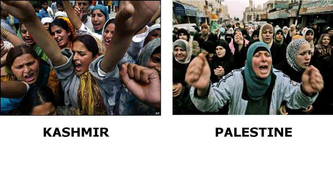 Kashmir and Palestine