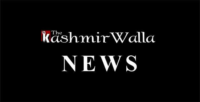 kashmir, srinagar, kashmir news, india, kashmir walla