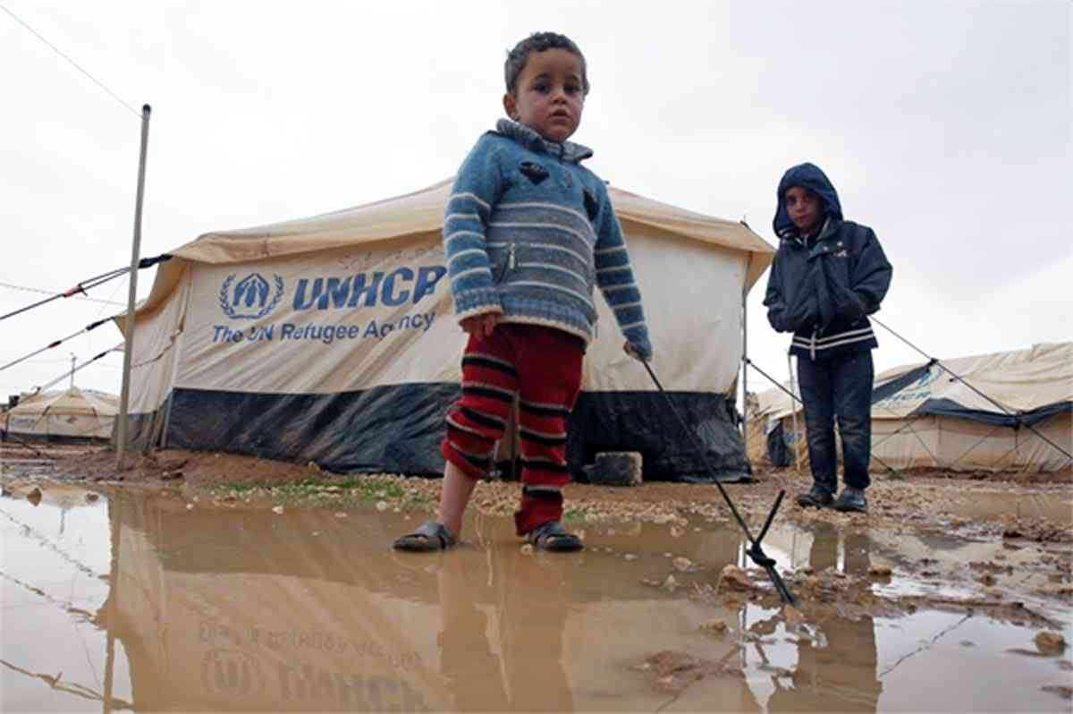 refugee boy essay