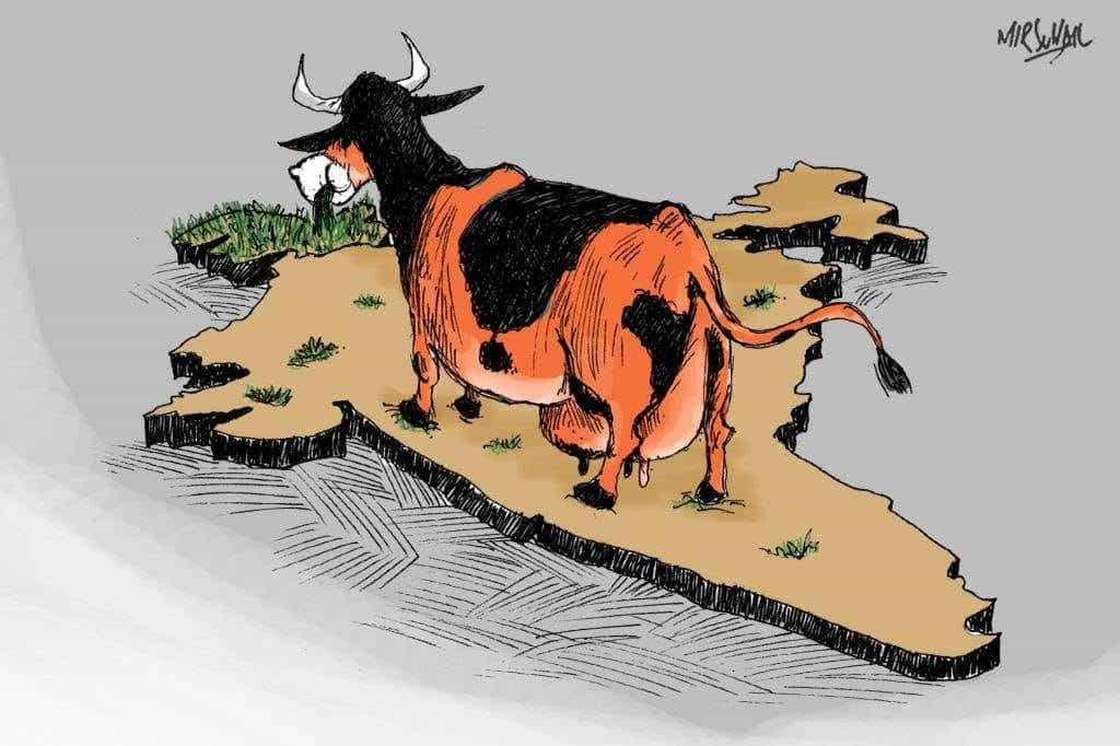 Photograph courtesy: Kashmiri cartoonist and graphic artist Mir Suhail
