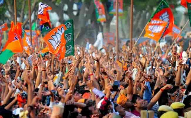 BJP, Elections, election commision, lok sabha,